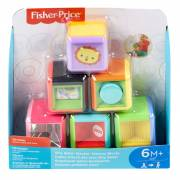 Fisher Price Dierenblokken, 6dlg.