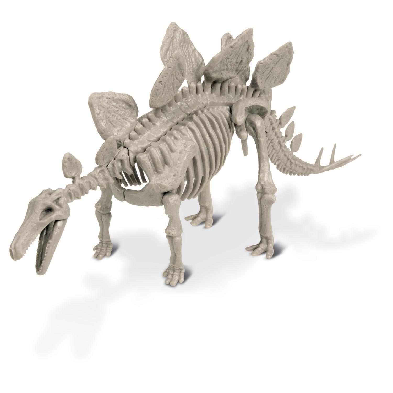 Geoworld Dino Extract Kit - Stegosaurus Skeleton | Thimble Toys